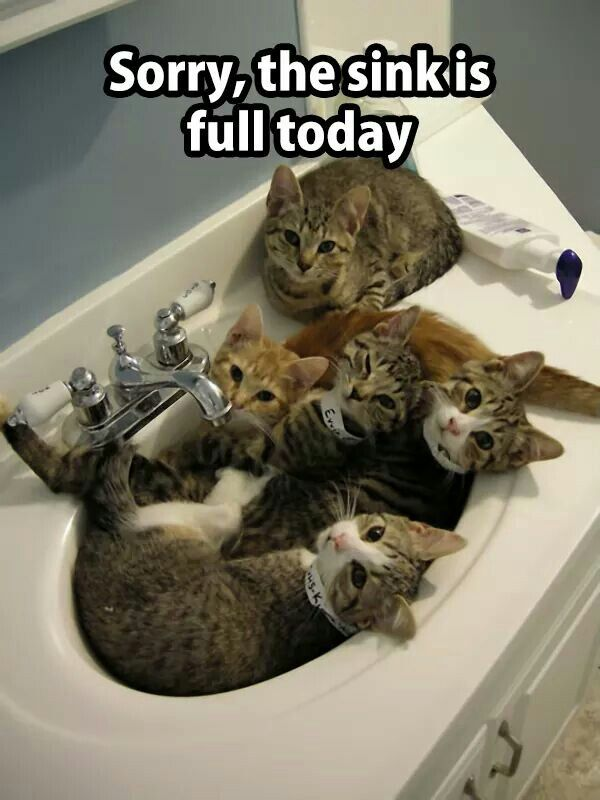 ...so you'll have to wash your hands somewhere else...:):):)