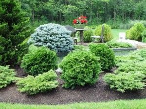 Bayberry Landscape Services provides a broad range of services for commercial and residential property care in Kinnelon NJ.