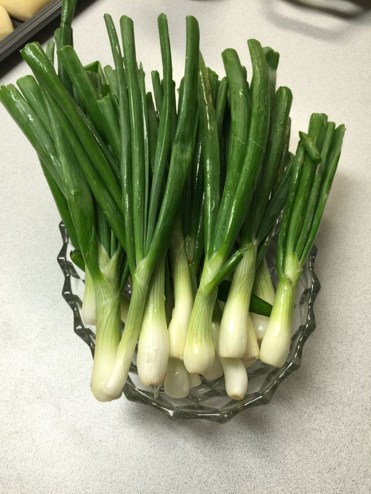 17 Best images about Onion Plants from Dixondale Farms on ...