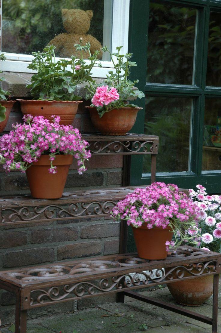 Estante para plantas en hierro forjado  www.elangreen.com