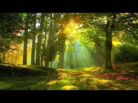 1 Hour of Celtic Instrumental Hymns | Harp, Piano, Strings, and Orchestra