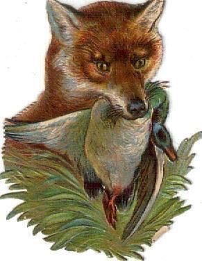 Victorian Die Cut Scrap Fox & Duck c1880