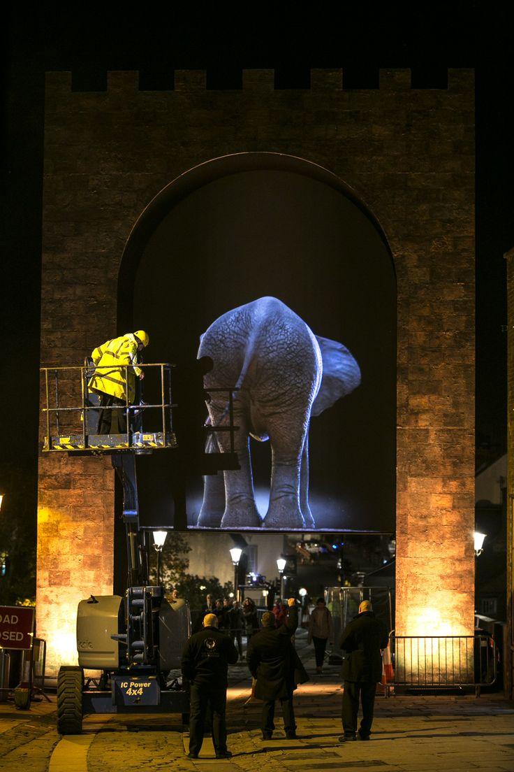 Behind the Scenes at Lumiere Durham 2013: A photograph of Top'la's Elephantastic being built and tested.