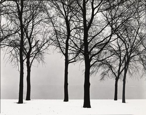 Chicago  Harry Callahan (American, 1912-1999)    c. 1950.