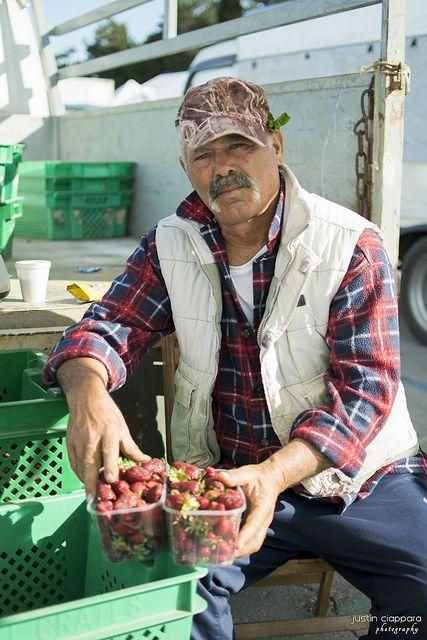 Maltese Farmer selling his fresh products at Ta' Qali, Farmers Market, Malta