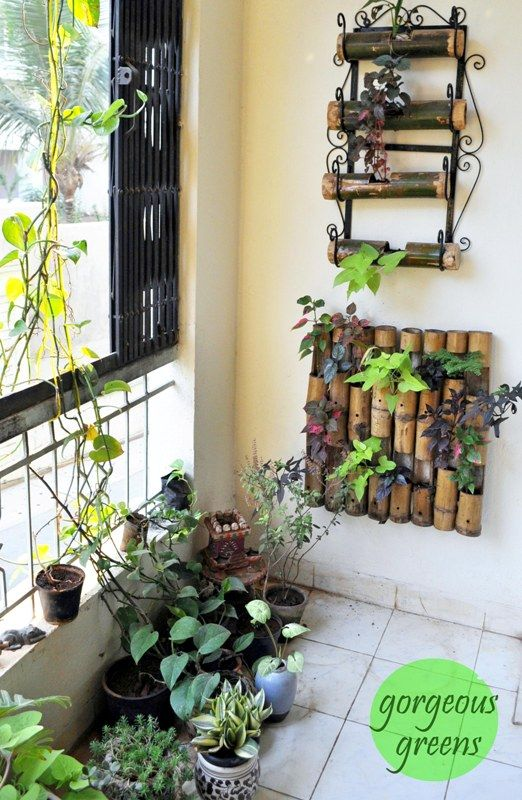 Colours Dekor: Green Thumb Decor - Manasa