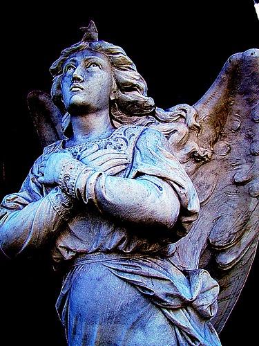 """cementerio """"el salvador"""", rosario, argentina"""