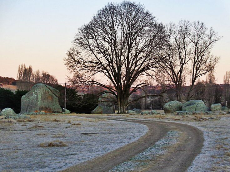 Frosty morning at Stonehenge Recreation Reserve. Glen Innes, NSW.