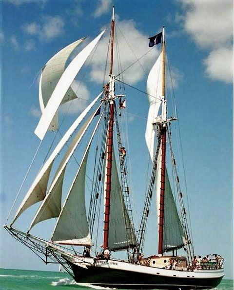 Best Tall SHIPS Images On Pinterest Sailing Ships Sailing - Boston tall ship cruise