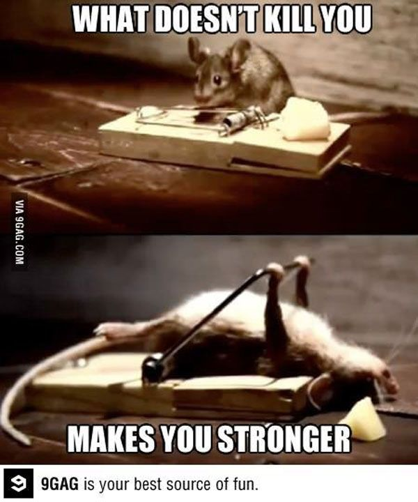 Strongerrrrrr