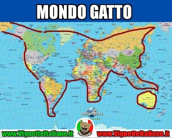 Visto così, sembra un mondo migliore #vignetteitaliane.it #vignette #italiane #immagini #divertenti #lol #funnypics #meme #gatti