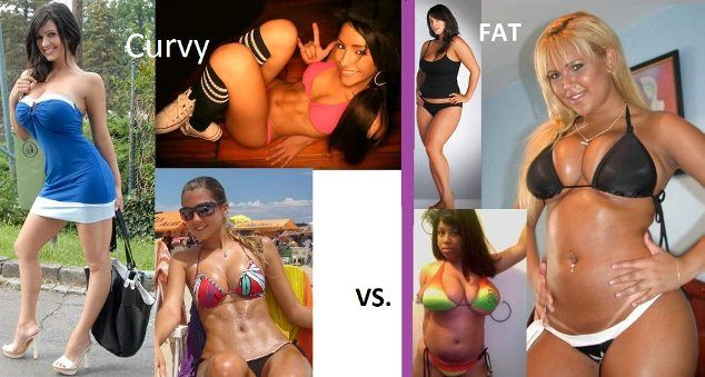 Difference between chubby and fat