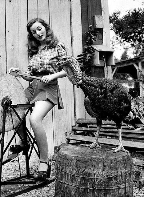 Vintage Thanksgiving Starlets:  Jeanne Crain.  Sharpening A Hatchet.  About To Murder A Clueless Turkey.