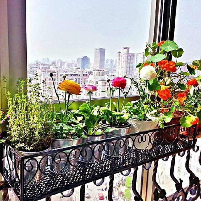 Best Amazon Com Jiyaru Hanging Flower P*T Shelf Railing Stand 640 x 480