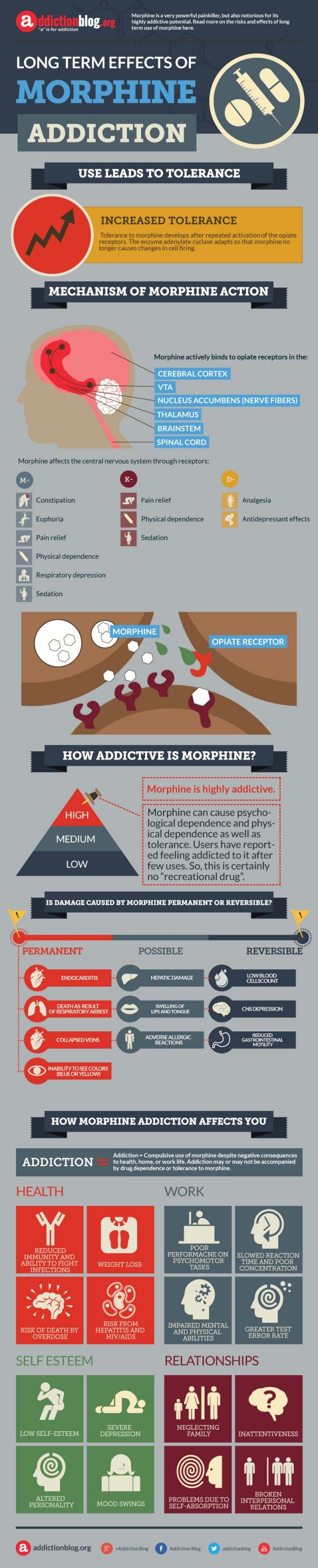 """Effects of morphine abuse and addiction. It is a highly addictive substance. It can cause psychological dependence and physical dependence as well as tolerance. Morphine also produces euphoria and other positive effects, which compel users to continue. Users have reported feeling addicted to it after few uses. So, this is certainly no """"recreational drug"""""""