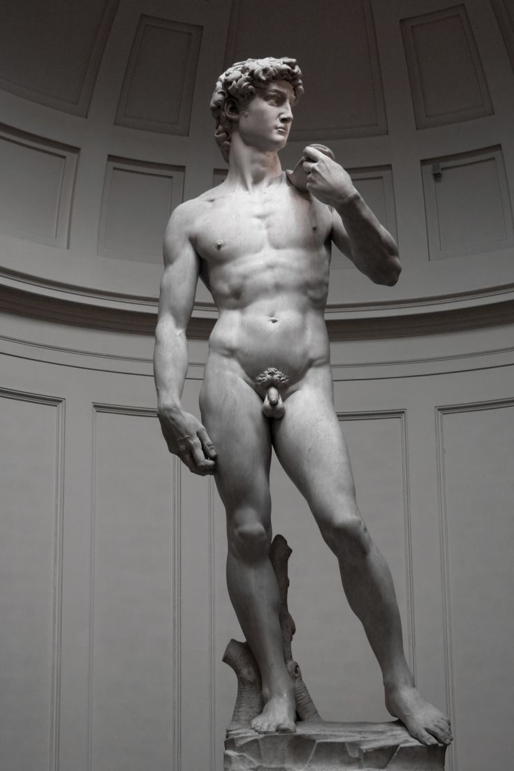 FLORENCE: THE ACCADEMIA GALLERY (skip the line). Half day guided tour of the Accademia Gallery in #Florence. Discover #Michelangelo's masterpieces, and especially the world-famous #David, with us! View details: http://www.sunnytuscanytours.com/gestione/view.php3?DB1_lingua=ENG&DB1_codice=1484&pagout=scheda_ENG.html&DB2_tag=Daily%20Tours