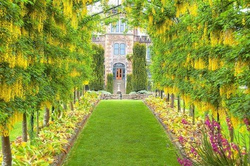 The gardens of Larnach Castle in Dunedin, New Zealand