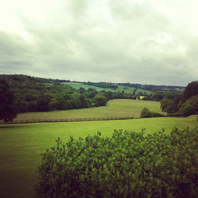 The view from Wood Hall hotel in Linton, Wetherby. Such a stunning place.