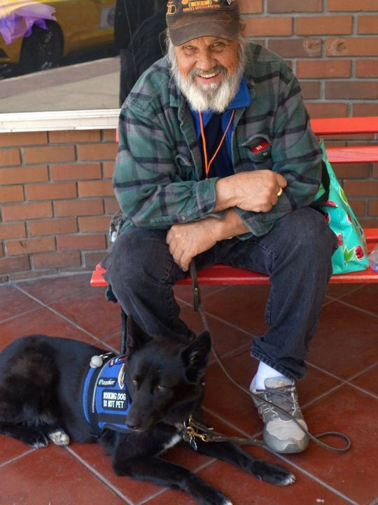 Training Your Own Psychiatric Service Dog Book