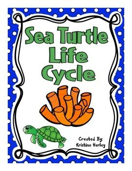 Sea Turtle Life Cycle:This resource contains 12 different activities focused on the life cycle of a sea turtle. All of the activities are available in COL0R and BLACK & WHITE!!!