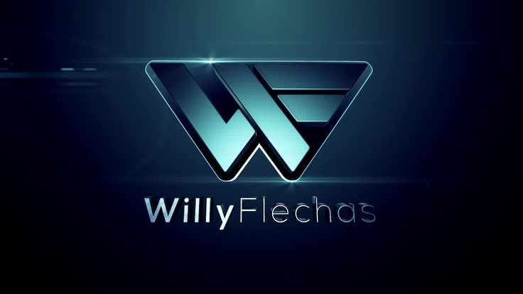 WILLY FLECHAS Intro 2014