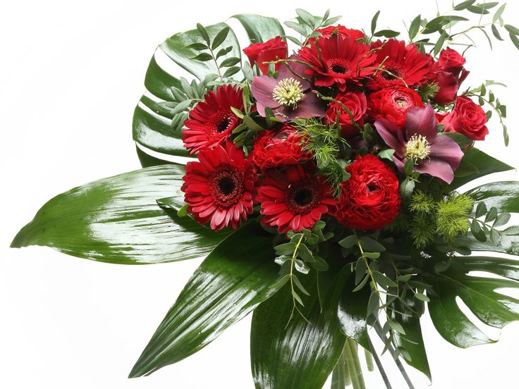 Lenyűgöző piros/bordó vegyes virágcsokor    #flowers#bouquet#viragszoro#viragszoroviragkuldes#red#rose#raninculus#helleborus#gerbera