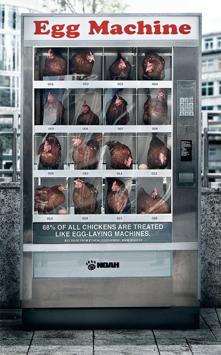 "This is an egg vending machine, a machine with caged chicken (real chicken, mind you) that was placed in Frankfurt, Germany. The bad news is that it doesn't actually lay fresh eggs at all… actually, it confronts whoever gets close to it with a message: ""68% of all the chickens in the world are treated like egg-laying machines""."