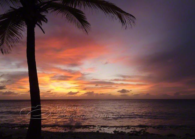Tropical Island Beach Ocean Sunset: 12 Best Images About Beach Photos On Pinterest