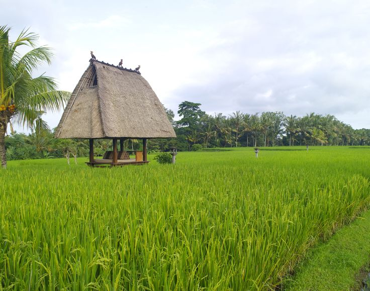 The Chedi Club Tanah Ubud, Outdoor Bale Jineng
