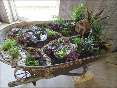 Fairy garden in a wheelbarrow!