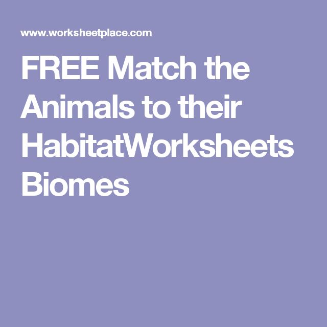 132 best homeed science math images on pinterest homeschool habitat worksheet for kindergarten learners identify the animal and where it might live fandeluxe Choice Image