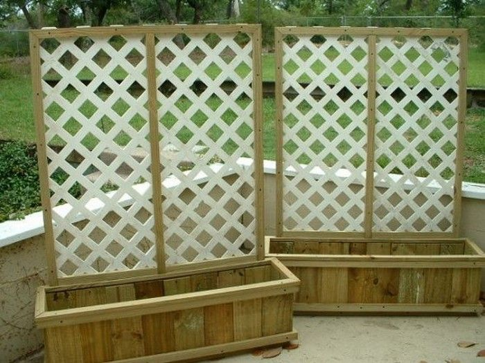 Best 25 privacy planter ideas on pinterest patio for Trellis planter garden screen