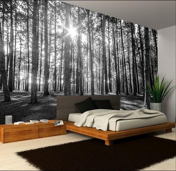 Best 25+ Photo wallpaper ideas on Pinterest | Forest ...