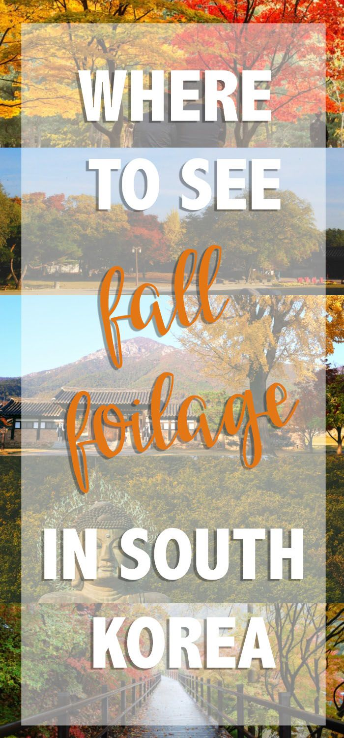 Korea shines best in autumn. I asked some bloggers what they thought were the best places to see fall foliage around the country. Here's our list. via @thshegoesagain