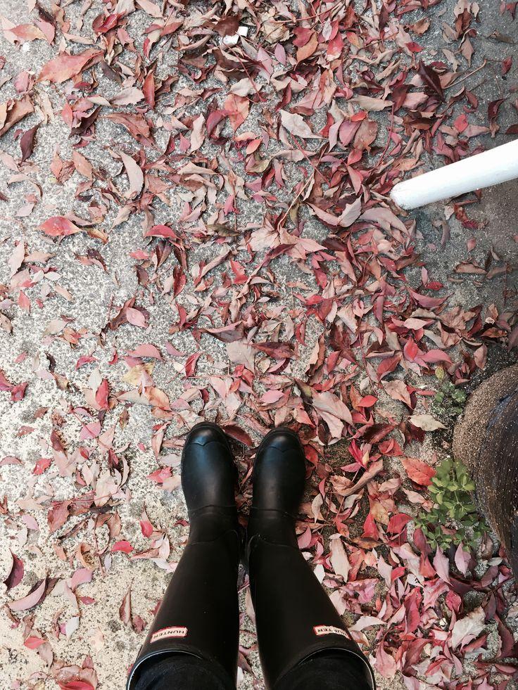 Boots Hunter in automn !  #automne #bottes #rouge #eteindien