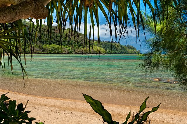 Anini Beach, Kauai. This is one of the calmest, most remote beaches. Large coral reef allows you to swim in the water without danger.