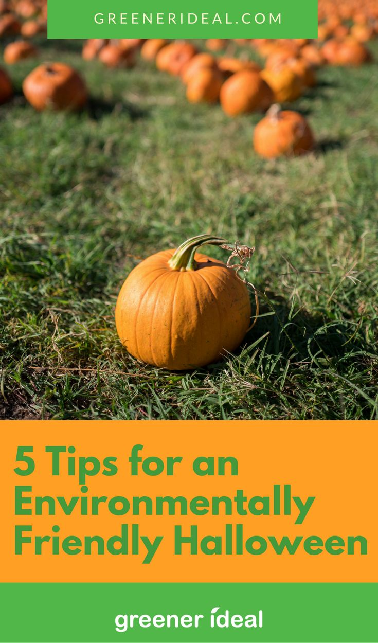 Here are five tips to help you enjoy a green Halloween.
