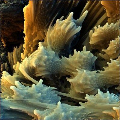 deepsalvage ii 3d fractal - photo #23