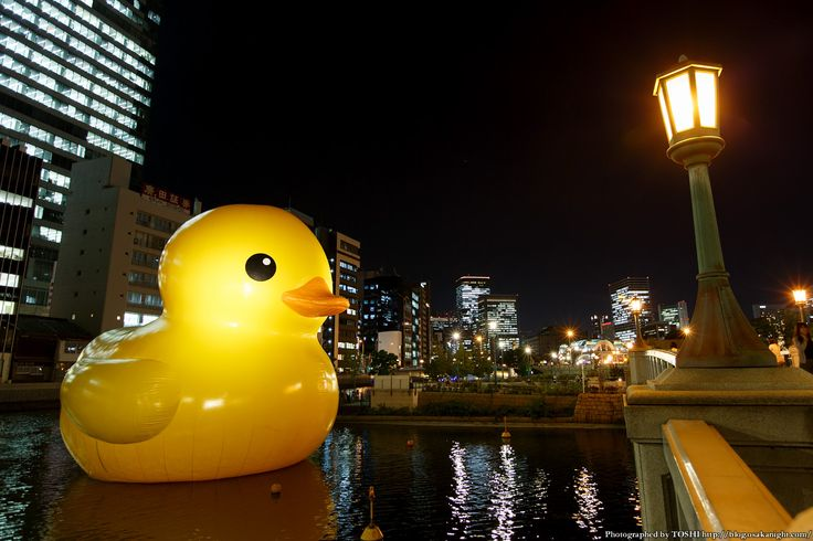 rubber_duck2015_04.jpg (1200×800)