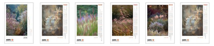 Exhibitions & Publications - Joanna Stoga fotograf