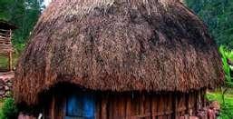 """Irian Jaya's house , called """"Honai"""""""