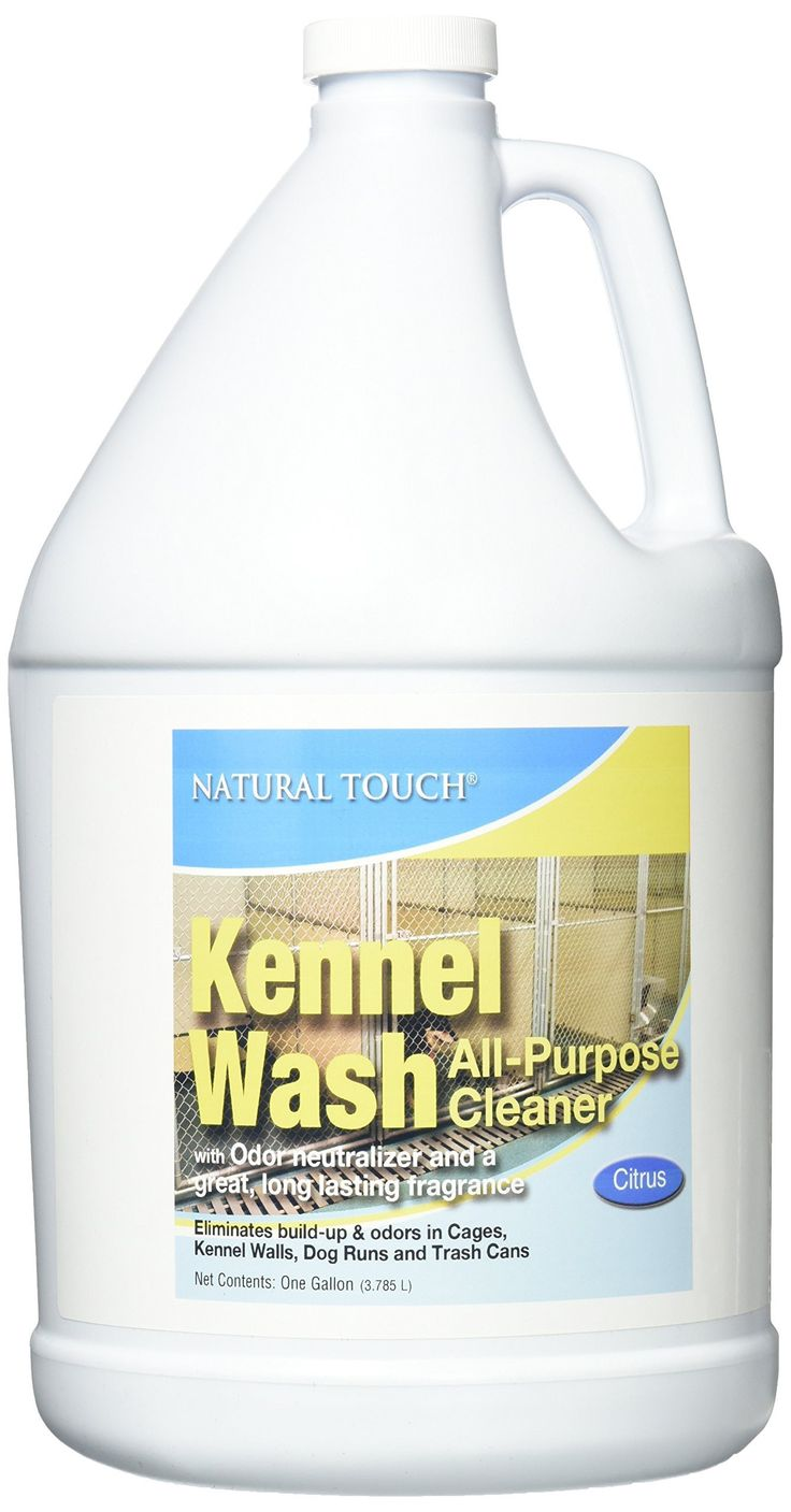 Kennel Wash With Odor Neutralizer Gallon