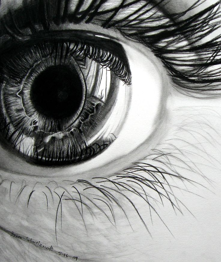Love the detail in the eye, reflecting everything it sees. May try this with tonal pencils and compressed charcoal pencils -iris