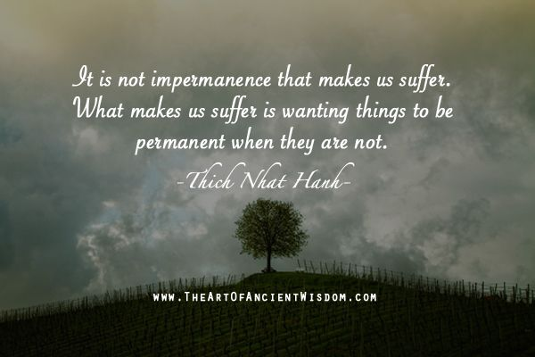 it is not impermanence that makes us suffer  what makes us