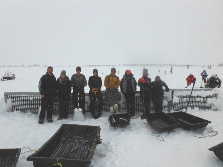 New study suggests northern tundra shifting from carbon sink to carbon source ~ Webb's team built snow fences to simulate how warming temperatures would affect carbon flux in the Alaskan permafrost. Credit: Elizabeth Webb