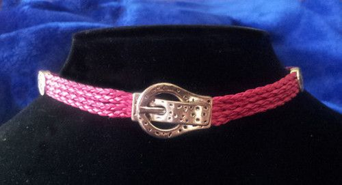 Fushia Pink Collar, cool magnetic closure in the front