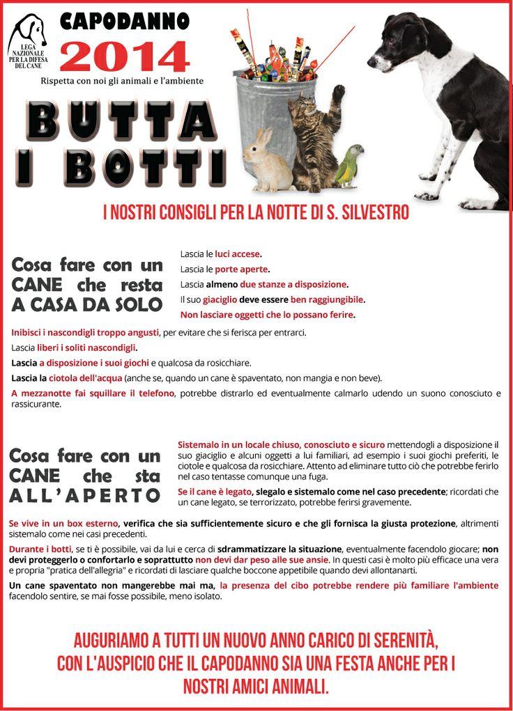 #buttaibotti - I #consigli della #LegadelCane per la notte di #Capodanno e gli #animali
