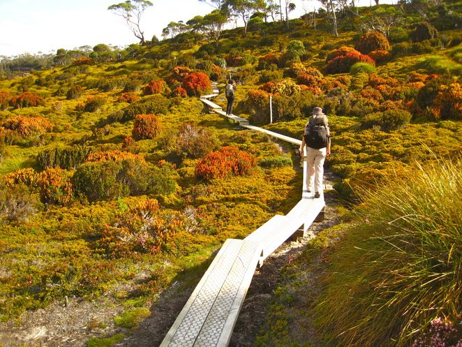 The Overland Track - Cradle Mountain to Lake St Claire