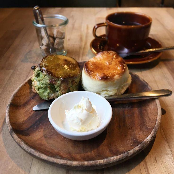スコーンセット(抹茶ホワイトチョコプレーン) 地元のcafehakutaで今年のカフェはじめ #cafehakuta #スコーン #カフェ #cafe #金町 #葛飾区