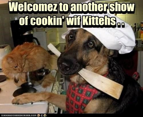 The Cooking with Kittens Show